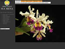 Specializing in Cattleya and other orchid species.  Pictures, articles, and reviews. Thomas Toulemonde.  Colombia.